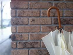 世界で一番傘を持っている日本人は、世界も注目する逆開きや模様が変わるハイテク傘を生み出していた