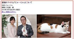 日本には討論中に猫が動きまわる番組がある!?テレ東「週刊ニュース新書」が海外で話題に