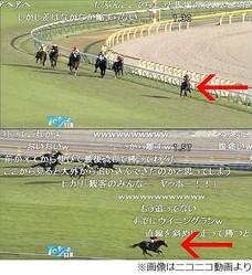 大逃げ→直線暴走Vの馬に騒然、デビューから5戦5勝のエイシンヒカリ。