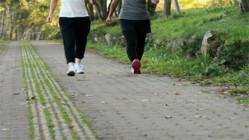 iPhoneで年末年始の運動不足と食べ過ぎを解消!歩くだけで猫の着せかえやWAONポイントが貯まる
