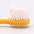 美しい口元に!歯科医が教える「歯磨き粉を選ぶポイント」とは?