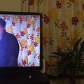 自宅のカーテンとドラマ「デスノート」のカーテンが同じことを示すツイート