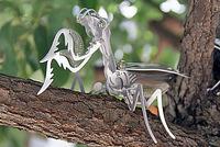 木の枝にとまっている、メタルカマキリ