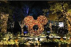クリスマスイルミネーション表参道原宿3施設で点灯 ディズニー110周年祝う