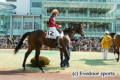 写真は今日のレースで2回目の騎乗となる高野和馬騎手