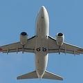 東京大阪間の航空便がいまだに存在している理由は?