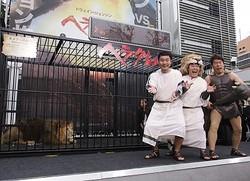 本物のライオンが新宿に! - ダチョウ倶楽部の肥後克広、上島竜兵、寺門ジモン