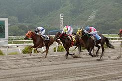 初めて惜しいと言われるようなレースをしたホリエモン(写真中央、黄色のゼッケン)