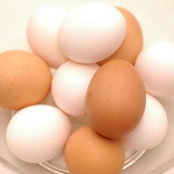 賞味 いつまで 卵 大丈夫 期限切れ