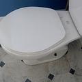 一生のうちトイレで過ごす時間は、3年—世界トイレ機関調査