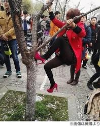 写真のため桜蹴りつける人々「逮捕されるべき」「まるで未開の人」。
