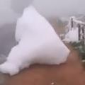 白い雲が落ちてきた? モワモワとした謎の物体が地面を埋め尽くす