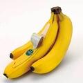 3本2000円…珍しいバナナを実食