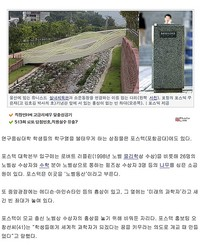 ノーベル賞を待ち望む韓国、「空の台座」や「名前のない橋」など準備は万端