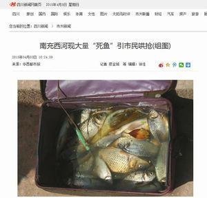 [画像] 川で魚が大量死・・・それ見た市民「フナだ、レンギョだ、食べられる、それっ」と殺到、大興奮=四川・南充