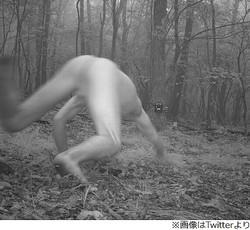 森の野生動物監視カメラ、謎の全裸男写り騒然