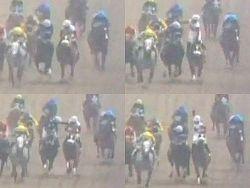 """レース中に馬上で騎手が殴り合い、米国の競馬で起きた""""乱闘劇""""。"""