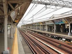 犬が迷い込んだ武庫川駅ホーム(WikimediaCommonsより)