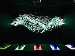 3つの部屋で体感 NIKE FREEのインタラクティブ美術館公開