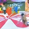 ブラジルで放送されたドッキリ企画のTV番組でポロリ モデルが激怒