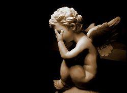 「天使は空を飛べない」英国の生物学者の研究に批判的な意見が続々。