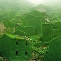 中国のジョウ泗列島 廃墟になり家は植物に覆われた異様な雰囲気に