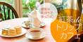 優雅な気持ちでほっこり  紅茶de トリップカフェ