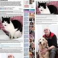 親友との絆 瀕死のネコを救う犬