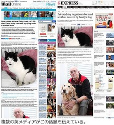 """瀕死の""""親友""""猫を犬が救う、茂みの前で吠え続け飼い主に報告。"""