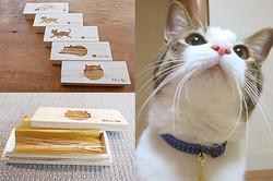 9,000個売れた『猫のひげケース』——ニッチな商品の裏に「深い猫愛」があった