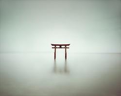 NY唯一の日本現代アートフェア、アッシュペーフランスが3月開催