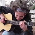 可愛いから許しちゃう!ギター弾きと猫のほのぼのバトル