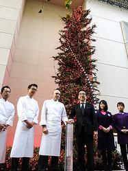 資生堂新社屋クリスマスツリーが点灯 銀座地区最長45mのイルミネーション