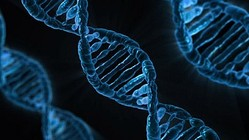 遺伝やタバコじゃなかったの!?癌になる理由、第1位を発表