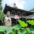対馬から略奪の仏像、返還に応じない韓国の思惑