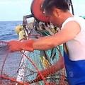 沖合たこかご漁業の試験操業の様子(写真提供:福島県)