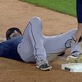MLBの試合中にハトが奇襲攻撃 大袈裟に転ぶ選手の動画が話題