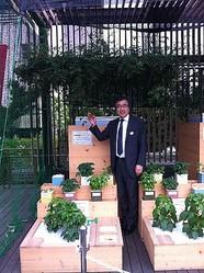 新宿伊勢丹屋上に野菜畑 ミニトマトやキュウリ収穫