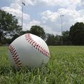 野球賭博を成立させる「ハンデ師」の技 絶妙な数字を設定