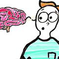 腸内のバクテリアが感情に影響? 脳や神経系以外も人の行動を左右
