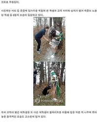韓国の女子中学生が「非モラルな卒業式」を強行…小麦粉まみれに