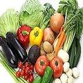 野菜を長持ちさせる方法が知りたい!