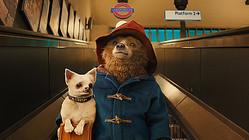 『パディントン』 ©2014 STUDIOCANAL S.A. TF1 FILMS PRODUCTION S.A.S Paddington Bear, Paddington AND PB are trademarks of Paddington and Company Limited