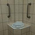 米SNSに投稿された「吐く人専用のトイレ」にコメント続々