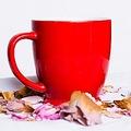 マグカップ1つでできる簡単朝ごはん スープの素とマカロニを使用