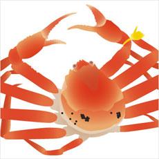 食用の蟹が生きてたのでペットに