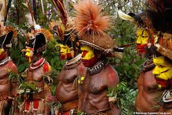 秘境パプアニューギニアの部族を撮影!杉山宣嗣写真展「部族の肖像 TRIBE@PAPUA NEW GUINEA」