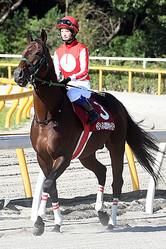 1997年8月9日生まれ、茨城県出身。身長157cm 体重46? 血液型=A型。目標とする騎手はシャンタル・サザーランドと兄弟子の丸山元気。好きな芸能人はEXILE。尊敬する人は坂本龍馬。座右の銘は「正々堂々」