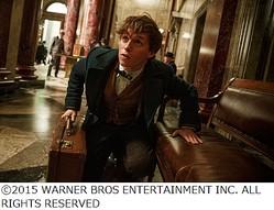 """新「ハリポタ」主人公の姿解禁、""""魔法のスーツケース""""の中身がカギ。"""