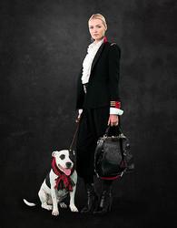 【動画】ラルフ ローレンが動物愛護を訴求 犬が主役のムービー公開